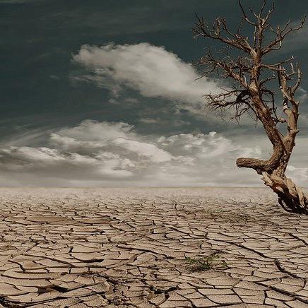 Деградация на почвите – можем ли да я управляваме?